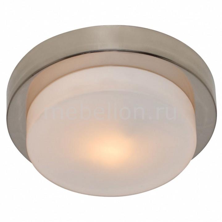 Накладной светильник Arte Lamp A8510PL-1SS Aqua