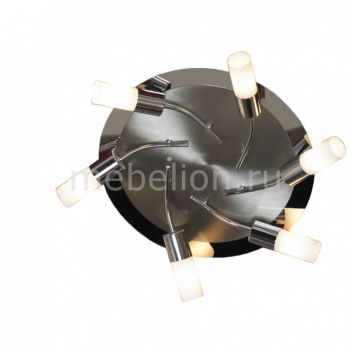 Потолочная люстра Lussole LSQ-2307-06 Recanati