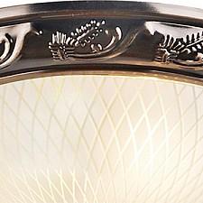 Накладной светильник Arte Lamp A3019PL-2AB Alta