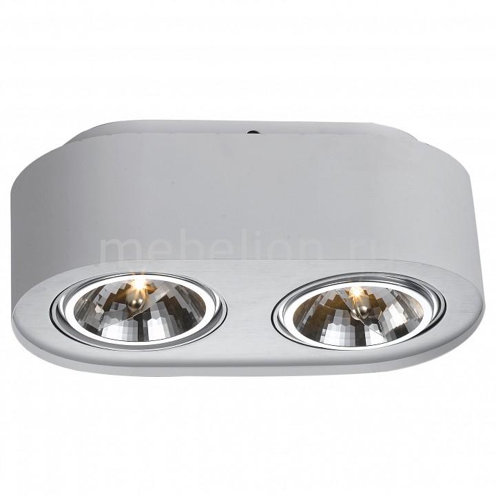 Накладной светильник Arte Lamp Cliff A5643PL-2WH потолочный светильник arte lamp cliff a5643pl 2wh