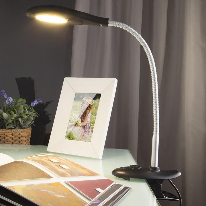 Настольная лампа офисная Elektrostandard Captor a038018 цены онлайн