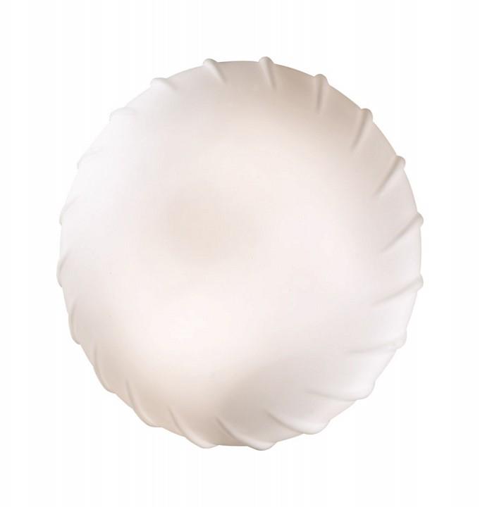 Накладной светильник Opal 2247/1C mebelion.ru 1105.000