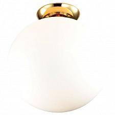 Накладной светильник Favourite 1531-1C2 Zirkel