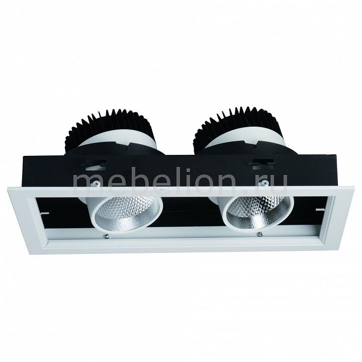 Встраиваемый светильник Arte Lamp A1712PL-2WH Cardani