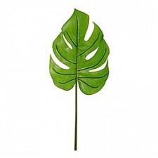 Зелень (57 см) Лист монстеры 58001600