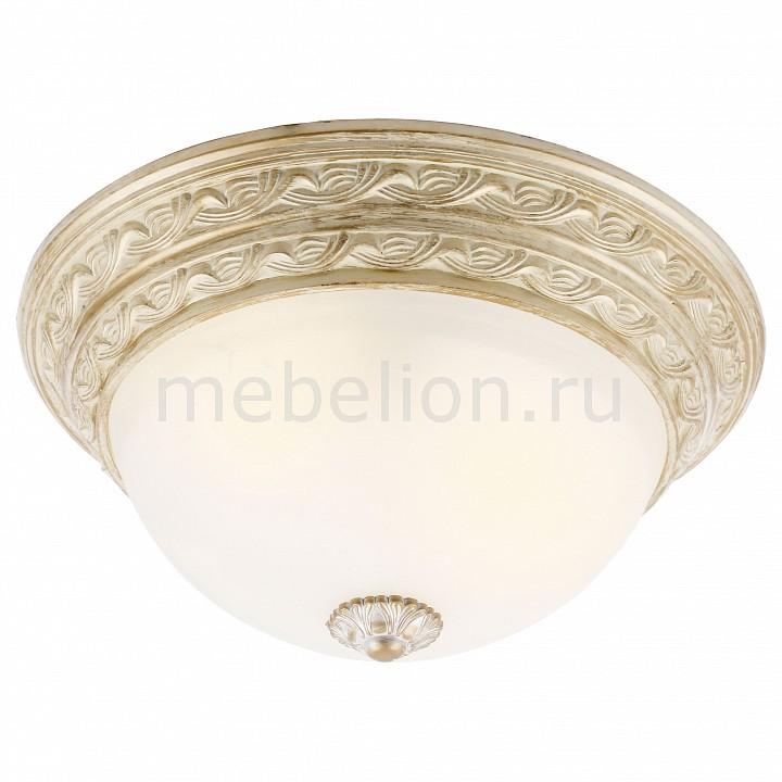 Накладной светильник Arte Lamp A8013PL-2WA Piatti