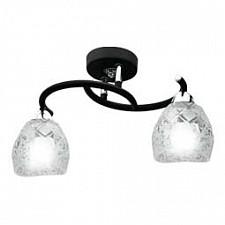 Накладной светильник IDLamp 381/2PF-Blackchrome 381