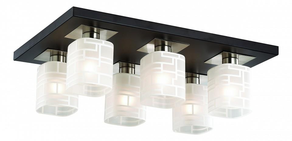 Накладной светильник Odeon Light Campus 2615/6C