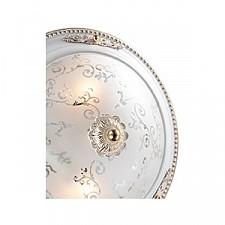 Накладной светильник Odeon Light 2670/2C Corbea