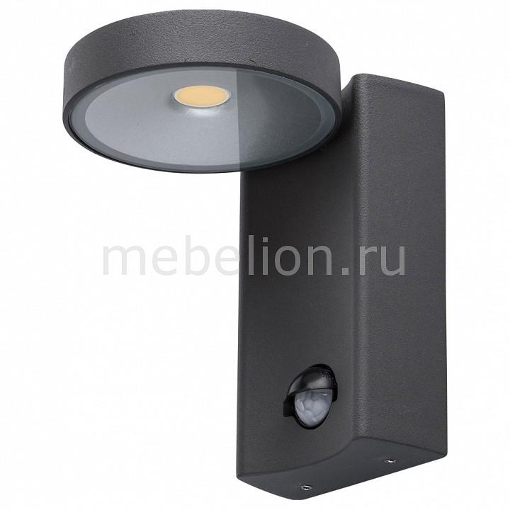 Накладной светильник MW-Light Меркурий 807022001 брюки матекс меркурий