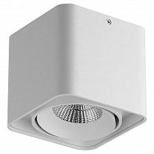 Накладной светильник Monocco 52116