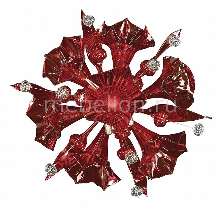 Купить Накладные светильники Celesta 893622  Накладной светильник Lightstar