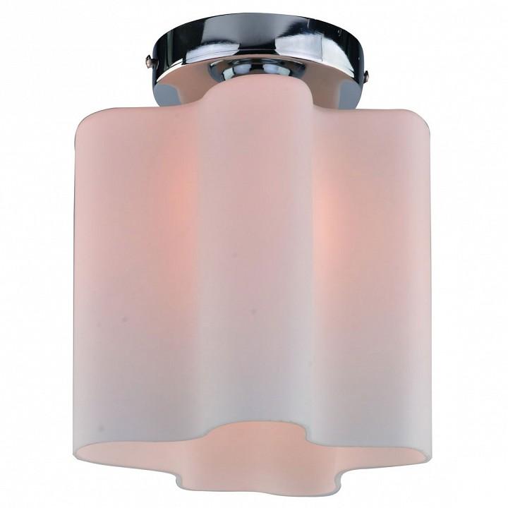 Купить Накладной светильник Serenata A3479PL-1CC, Arte Lamp, Италия