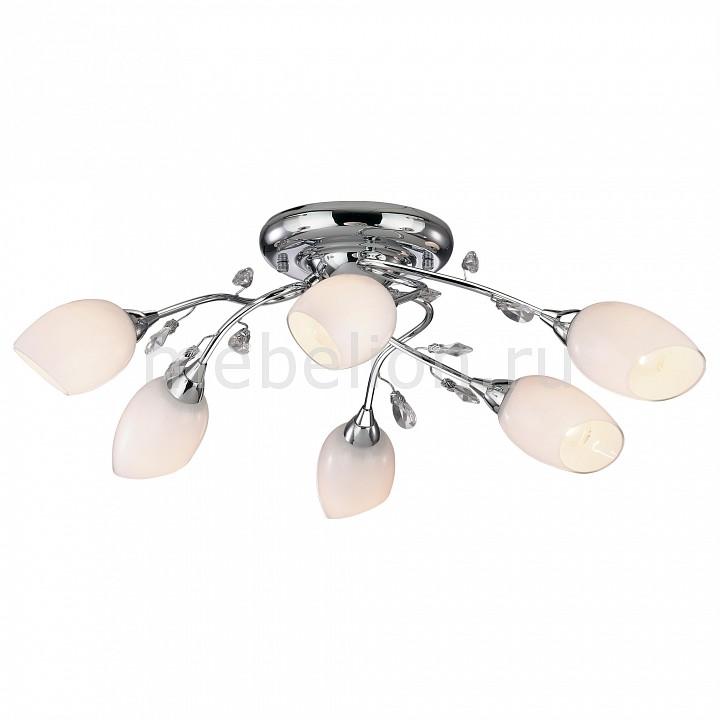 Потолочная люстра Odeon Light 1603/6 Fiera
