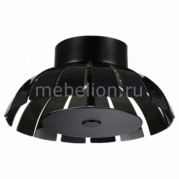 Накладной светильник ST-Luce SL559.703.01 SL559