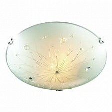 Накладной светильник Likia 205