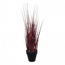 Растение в горшке Home-Religion (58 см) Декоративная трава 56001100