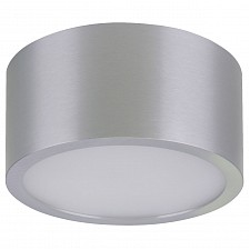 Накладной светильник Zolla 213919