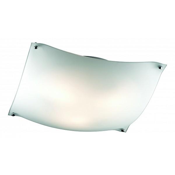 Накладной светильник Ravi 3203