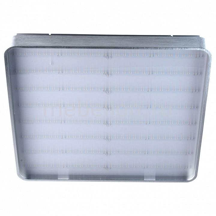Купить Накладной светильник Граффити 678011901, MW-Light, Германия