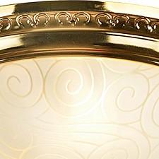 Накладной светильник Arte Lamp A3013PL-2GO Alta