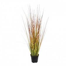 Растение в горшке (50 см) Трава 58005500
