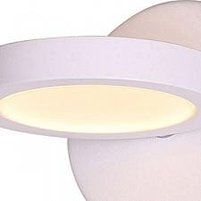 Накладной светильник ST-Luce SL588.101.01 Colo