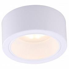 Накладной светильник Arte Lamp A5553PL-1WH Effetto