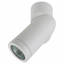 Накладной светильник Lightstar 051016 Illumo