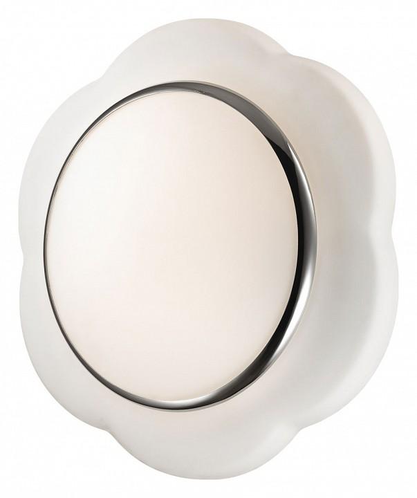 Накладной светильник Baha 2403/3C mebelion.ru 3515.000