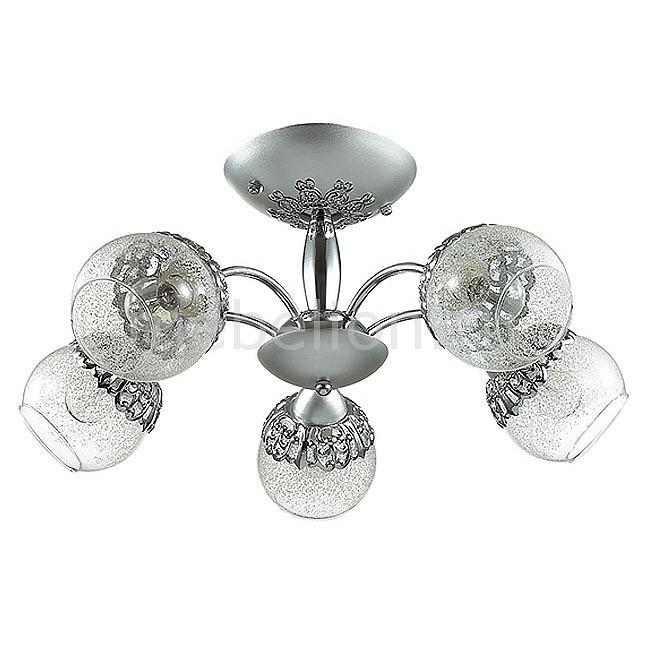 Люстра на штанге Lumion Nevette 3020/5C lumion 3020 5c ln16 000 хром стекло метал декор люстра потолочная e14 5 60w 220v nevette