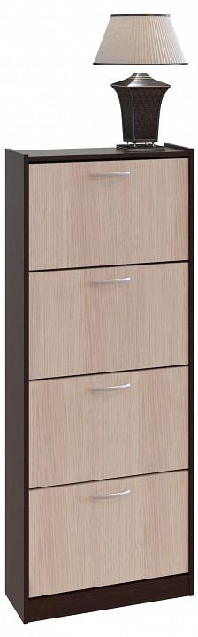 Шкаф для обуви ТО-24