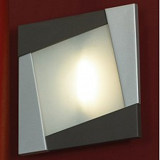 Накладной светильник Lussole LSQ-8002-01 Cefone