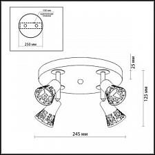 Спот Odeon Light 2612/4C Bierzo