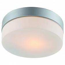 Накладной светильник Arte Lamp A3211PL-1SI Aqua