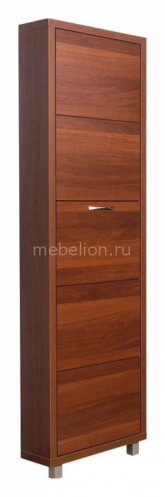 Шкаф для обуви Айрон Айрон Люкс 5с