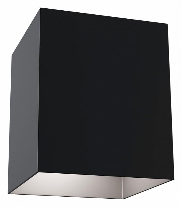 Накладной светильник Maytoni Alfa C015CL-01B