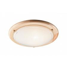 Накладной светильник Riga 273