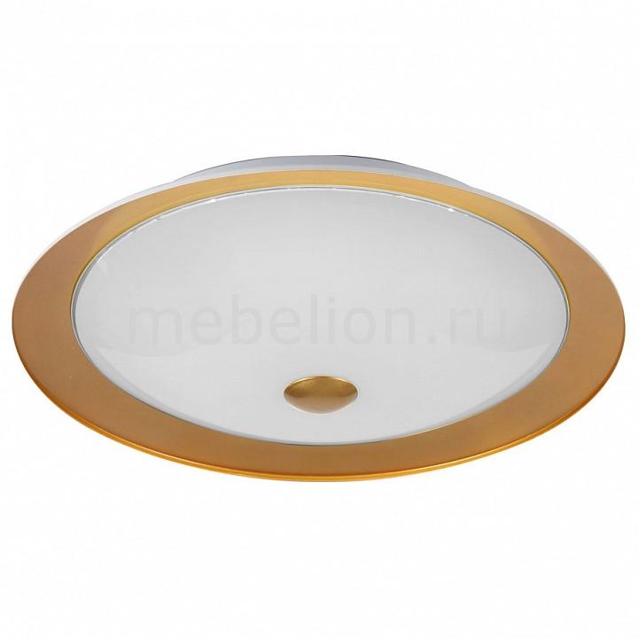 Накладной светильник Maytoni CL815-PT42-G Euler