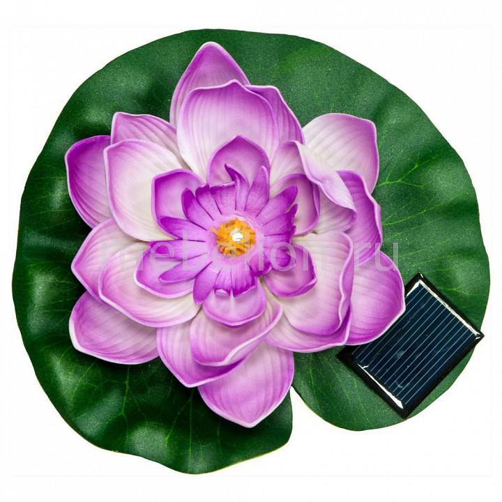 Цветок Кувшинка PL263 06242