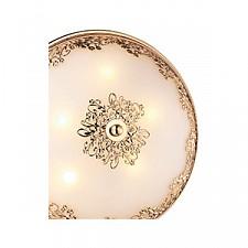 Накладной светильник Odeon Light 2676/5C Alesia