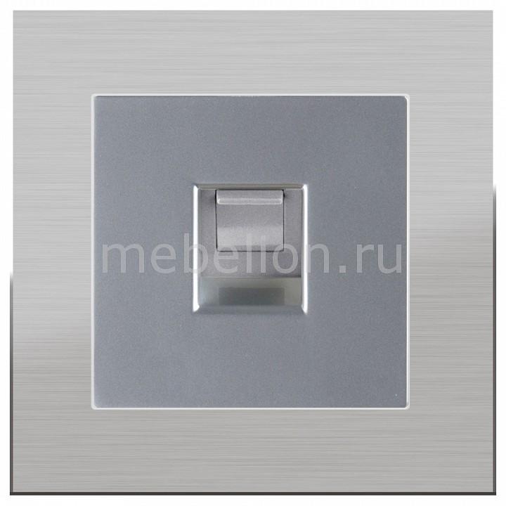Розетка телефонная RJ-11 Werkel без рамки Aluminium(Серебряный) WL06-DM600+WL06-RJ-11 диммер серебряный wl06 dm600 4690389053962