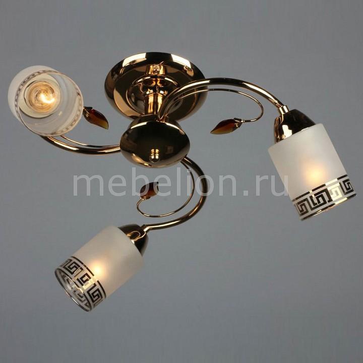 Люстра на штанге Omnilux OML-36817-03 OM-368