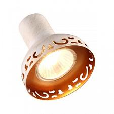 Спот Arte Lamp A5219AP-2WG Focus