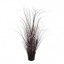 Растение в горшке Home-Religion (60 см) Трава 58005600