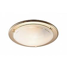 Накладной светильник Sonex 115 Riga