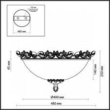 Накладной светильник Odeon Light 2431/3C Ponga