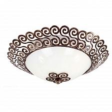 Накладной светильник Favourite 1670-2C Dina