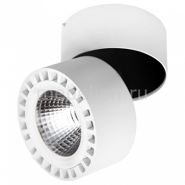 Накладной светильник Lightstar Forte 381364