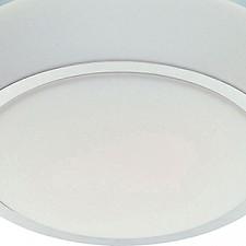 Накладной светильник ST-Luce SL496.502.02 Bango
